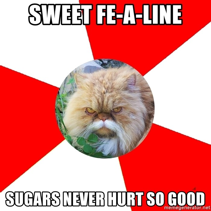 Diabetic Cat - Sweet fe-A-Line sugars never hurt so good