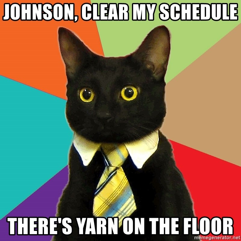 Business Cat - Johnson, clear my schedule there's yarn on the floor
