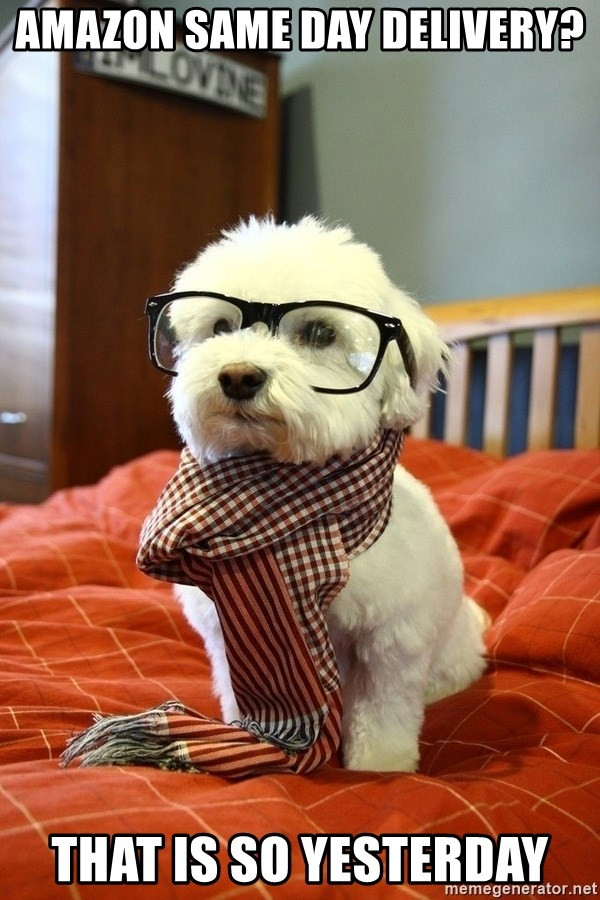 hipster dog - AMAZON SAME DAY DELIVERY? that is so yesterday