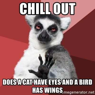 Chill Out Lemur - chill out does a cat have eyes and a bird has wings