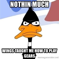 Puzzled Daffy - Nothin Much  Wings taught me how to play gears