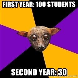 Engineering Student Bat - FIRST YEAR: 100 students Second year: 30