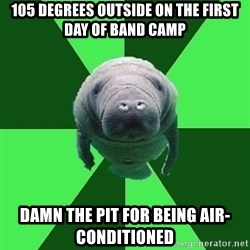 Marching Band Manatee - 105 DEGREES OUTSIDE ON THE FIRST DAY OF BAND CAMP DAMN THE PIT FOR BEING AIR-CONDITIONED