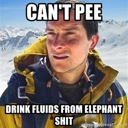 Bear Grylls - can't pee drink fluids from elephant shit