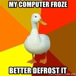 Technologically Impaired Duck - My computer froze better defrost it