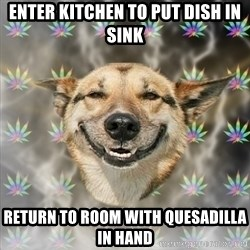 Stoner Dog - enter kitchen to put dish in sink return to room with quesadilla in hand