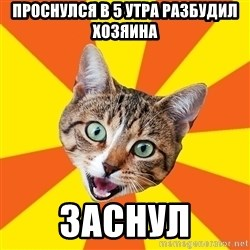 Bad Advice Cat - проснулся в 5 утра разбудил хозяина заснул