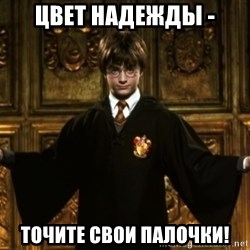 Harry Potter Come At Me Bro - Цвет надежды - точите свои палочки!