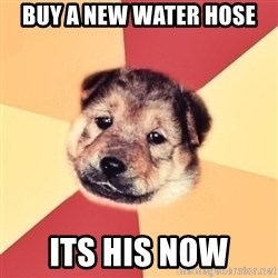 Typical Puppy - buy a new water hose its his now