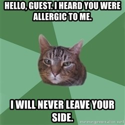 fyeahassholecat - Hello, guest. i heard you were allergic to me. i will never leave your side.