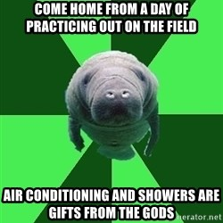 Marching Band Manatee - come home from a day of practicing out on the field air conditioning and showers are gifts from the gods
