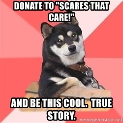 """Cool Dog - Donate to """"Scares that care!"""" And be this cool.  True Story."""