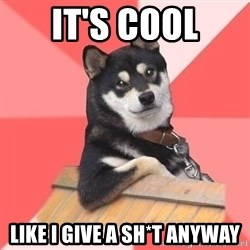 Cool Dog - it's cool like i give a sh*t anyway