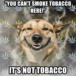 Stoner Dog - ''You can't smoke tobacco here!'' it's not tobacco