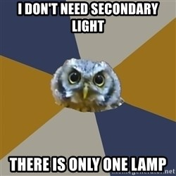 Art Newbie Owl - i don't need secondary light there is only one lamp