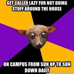 Engineering Student Bat - get called lazy for not doing stuff around the house on campus from sun up to sun down daily