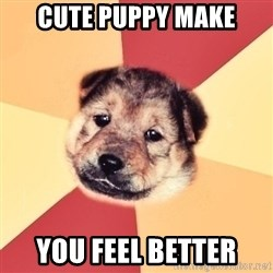Typical Puppy - CUTE PUPPY MAKE YOU FEEL BETTER