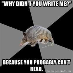 "English Major Armadillo - ""Why didn't you write me?"" Because you probably can't read."
