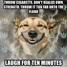 Original Stoner Dog - throw cigarette, don't realize own strength, throw it too far onto the floor laugh for ten minutes