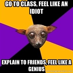 Engineering Student Bat - go to class, feel like an idiot explain to friends, feel like a genius