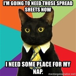 Business Cat - I'm going to need those spread sheets Now  I need some place for my nap.