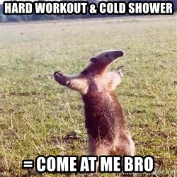 Anteater - HARD WORKOUT & cold shower = COME AT ME BRO