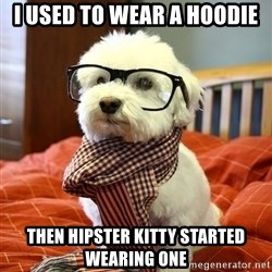 hipster dog - i used to wear a hoodie then hipster kitty started wearing one