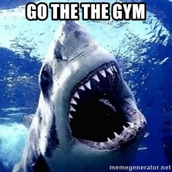 Cinematically Snob Shark - go the the gym