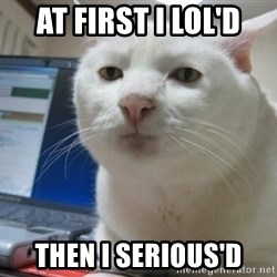 Serious Cat - at first i lol'd then i serious'd