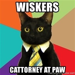 Business Cat - Wiskers  cattorney at paw