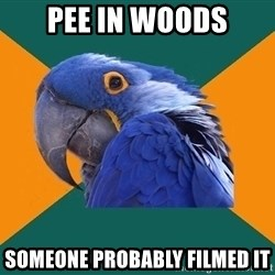 Paranoid Parrot - pee in woods someone probably filmed it