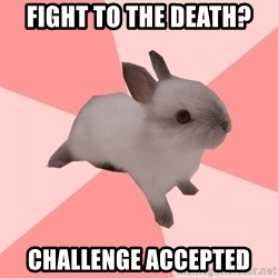 Roleplay Shipper Bunny - fight to the death? challenge accepted