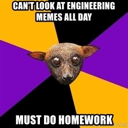 Engineering Student Bat - can't look at engineering memes all day must do homework
