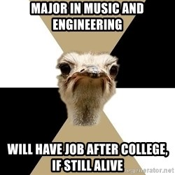 Music Major Ostrich - major in music and engineering will have job after college, if still alive