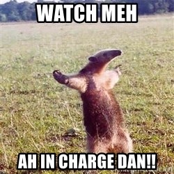 Anteater - watch meh ah in charge dan!!