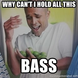 Limes Guy - WHY CAN'T I HOLD ALL THIS BASS