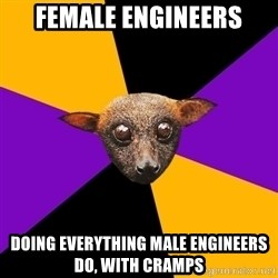 Engineering Student Bat - FEMALE ENGINEERS DOING EVERYTHING MALE ENGINEERS DO, WITH CRAMPS