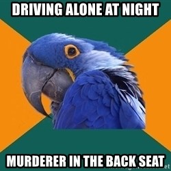 Paranoid Parrot - Driving alone at night murderer in the back seat