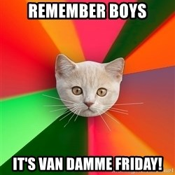 Advice Cat - remember boys it's van damme friday!