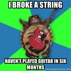 Aspiring Musician Turtle - I BROKE A STRING HAVEN'T PLAYED GUITAR IN SIX MONTHS
