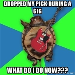 Aspiring Musician Turtle - DROPPED MY PICK DURING A GIG WHAT DO I DO NOW???