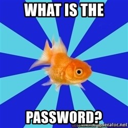 Absentminded Goldfish - What is the password?