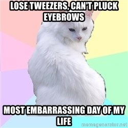 Beauty Addict Kitty - Lose tweezers, can't pluck eyebrows most embarrassing day of my life