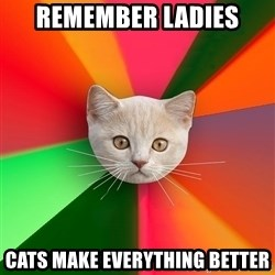 Advice Cat - remember ladies cats make everything better