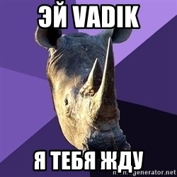 Sexually Oblivious Rhino - эй vadik я тебя жду