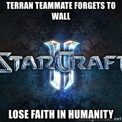 Wtf starcraft - terran teammate forgets to wall lose faith in humanity