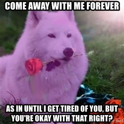 Don Courage Wolf - come away with me forever as in until i get tired of you, but you're okay with that right?