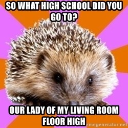 Homeschooled Hedgehog - SO WHAT HIGH SCHOOL DID YOU GO TO? OUR LADY OF MY LIVING ROOM FLOOR HIGH