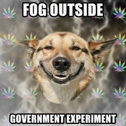 Stoner Dog - fog outside Government experiment