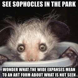 Fyeahtheatreayeaye - See Sophocles in the park wonder what the wide expanses mean to an art form about what is not seen